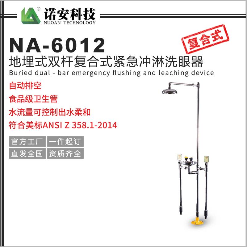 地埋式双杆洗眼器 地埋式304不锈钢 复合式紧急冲淋洗眼器NA-6012
