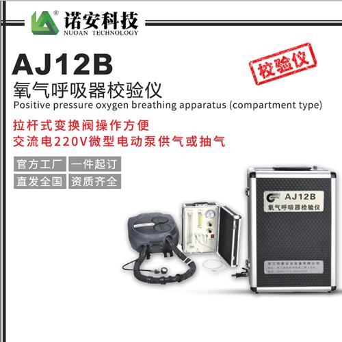 AJ12B氧气呼吸器校验仪