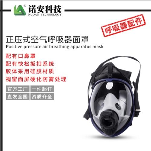 正压式空气呼吸器面罩